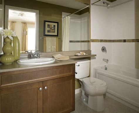 bathroom mildew removal    rid  bathroom mold