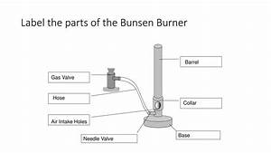 Amedelyofpotpourri  Bunsen Burner Parts Labeled