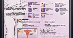 Anatomical Chart Company Canada Menopause