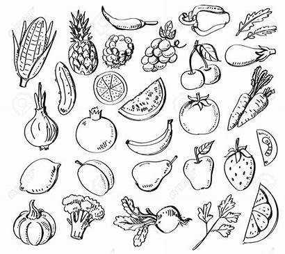 Coloring Fruit Vegetables Drawing Fruits Pages Veg