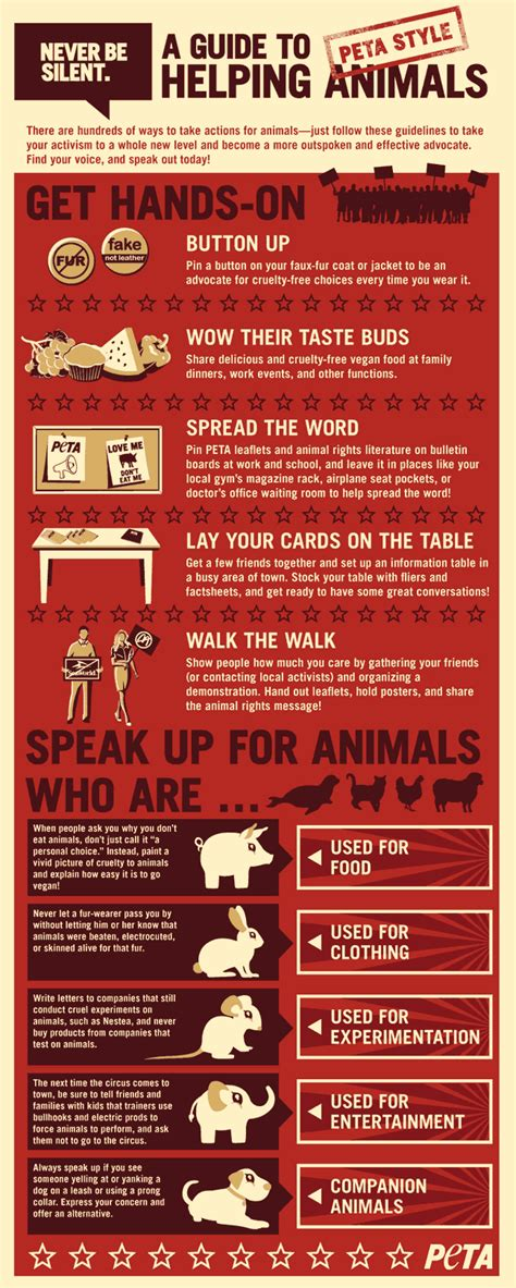 noise  guide  helping animals infographic