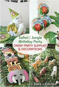 Safari / Jungle Themed First Birthday Party – Cheap Party