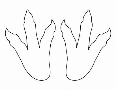 Dinosaur Footprints Pattern Footprint Template Printable Templates
