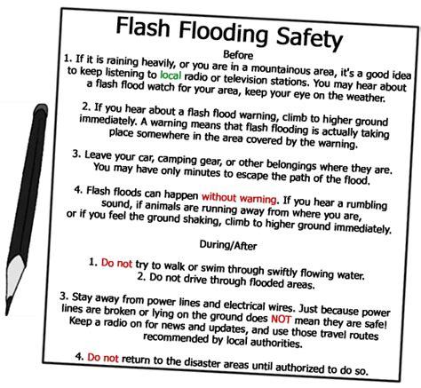 blackout survival tips