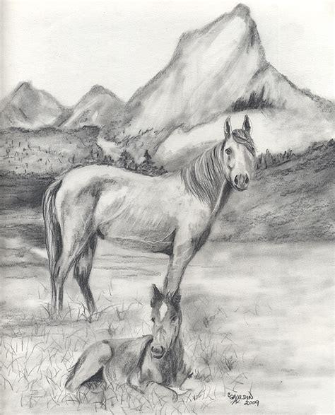 animal drawings  texasladys blog