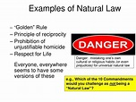 PPT - Today's Assignment: Natural Law PowerPoint ...
