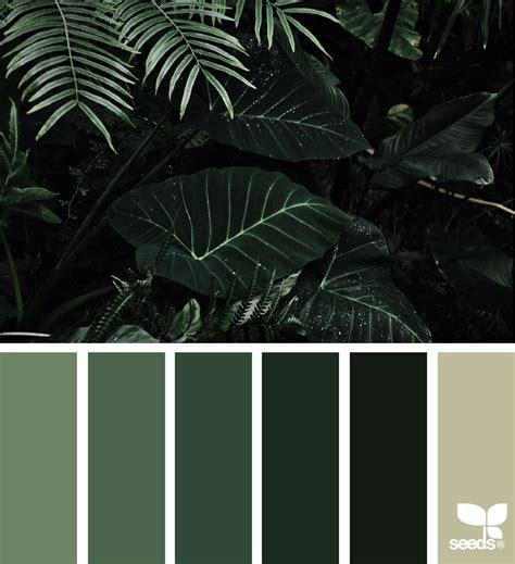 color jungle paint colors palettes green colour