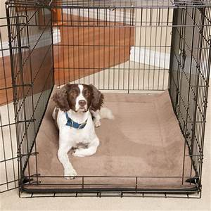 puppy housetraining supplies housebreaking aids and With non destructive dog bed