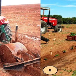 Because coffee grounds are considered organic material, some people also say that coffee will attract more earthworms and other beneficial. (PDF) Parameters of operational performance of soil preparation and semimechanized ...