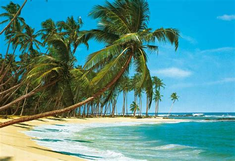 tropical beach wallpapers  cool images