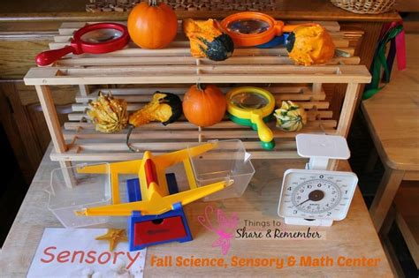 simple fall science centers for preschoolers 627 | Fall Science Sensory Math Center