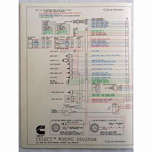 Cat C13 Ecm Wiring Diagram