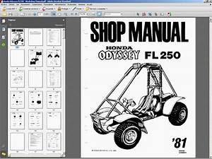 Honda Odyssey Fl250 - Service Manual - Wiring Diagram