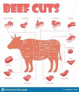 Beef Cartoons  Illustrations  U0026 Vector Stock Images