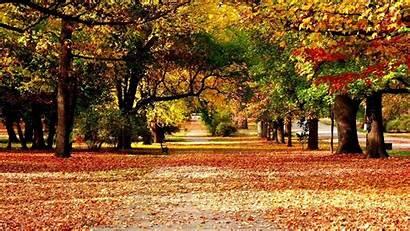 Scenery Autumn Wallpapers Desktop