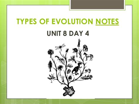 Types Of Evolution Notes