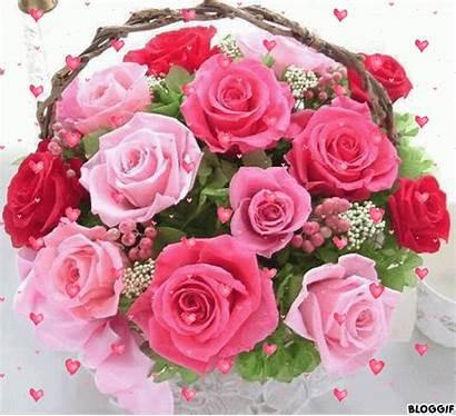 Flores Gifs Rosas Bouquet Encontradas Lindas Floral