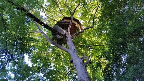 chambre hote de charme normandie cabane dans les arbres en normandie