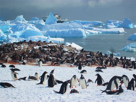 The Flight Deal | Practical Travel Tips: Ushuaia, Argentina