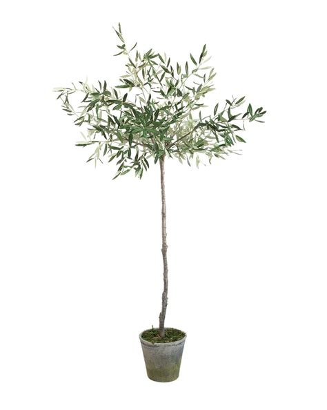 faux potted olive tree mcgee