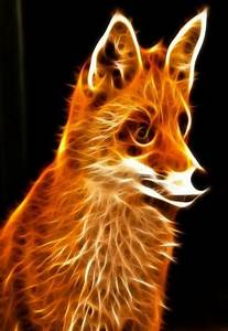14 best images about Cool neon animals on Pinterest ...