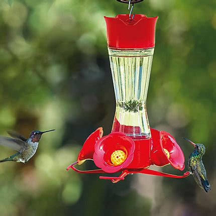 pets hummingbird feeders pet 174 pinch waist glass hummingbird feeder model