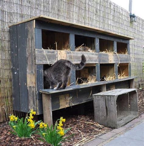 15 Best Feral Cat Shelters Images On Pinterest  Feral Cat