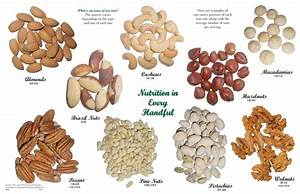 1 oz servings of different types of tree nuts. (almonds ...