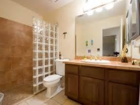 remodeling a bathroom ideas bathroom remodeling remodeled bathrooms plans on a budget bath remodel diy bathroom bathroom