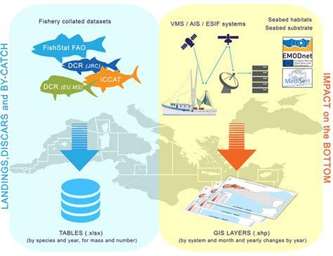 fisheries management emodnet medsea checkpoint