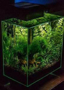 50  Stunning Aquarium Design Ideas For Indoor Decorations