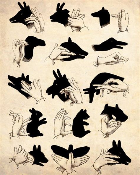 groundhog day activities for toddler amp preschool 634 | shadow puppets lyla blu by gillian