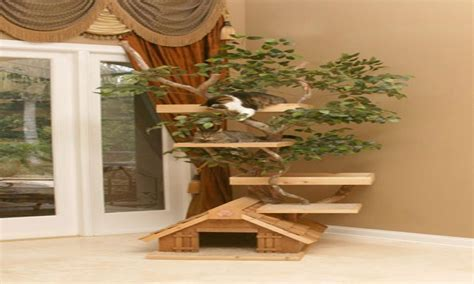 cat house designs indoor cat house plans www pixshark com images galleries with a bite