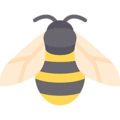 honey bee renovation