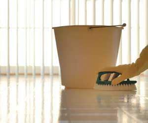 remove wax  vinyl  linoleum floors im