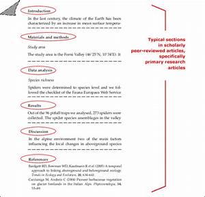 stuarts primary homework help creative writing scheme of work year 9 peer editing synthesis essay
