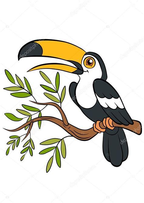 aves de dibujos animados  ninos pequeno tucan lindo