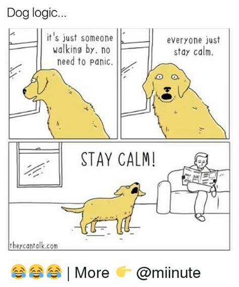 Dog Logic Meme - 25 best memes about dog logic dog logic memes
