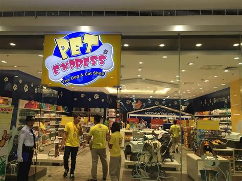 good news pet express sm downtown ezydog philippines