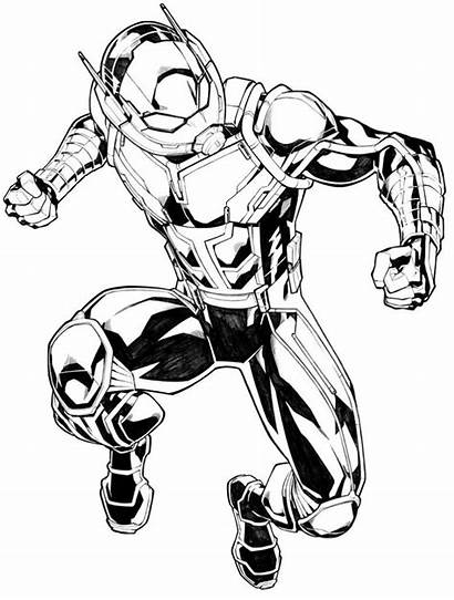 Ant Marvel Coloring Pages Drawing Avengers Carlosgomezartist