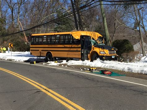Tree Limb Falls On School Bus, Killing Driver
