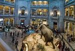 Museo Nacional de Historia Natural - TurismoEEUU