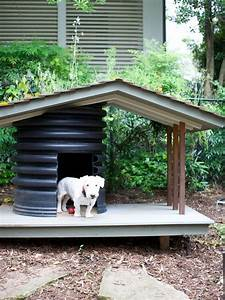 best lil dog house in texas 28 images phenomenal best With the best little dog house in texas