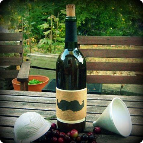 muscadine wine recipe 25 b 228 sta muscadine wine id 233 erna p 229 pinterest