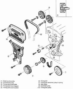Car Belt Diagrams  2003 Kia Spectra Timing Belt Installation