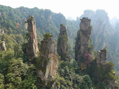 Tianzi Mountain Wallpapers Images Photos Pictures Backgrounds