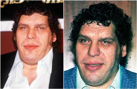 Andre The Giant's height, weight. He was since the very ...