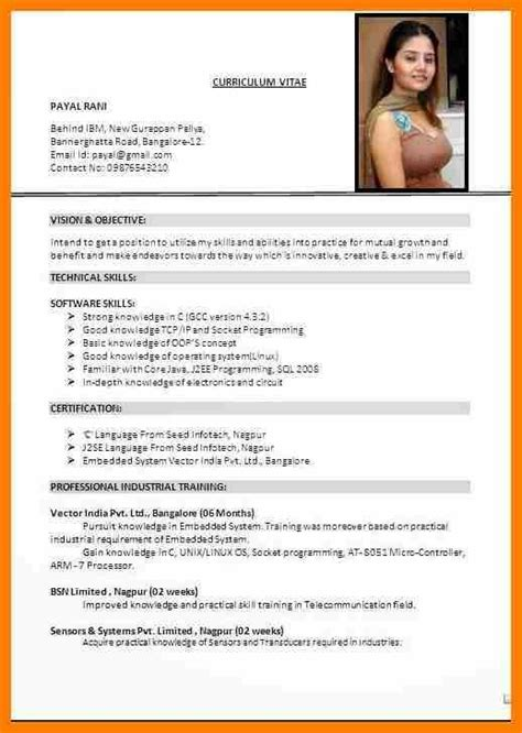 Updated Cv Format by 10 Cv Format 2017 India Sephora Resume Resume