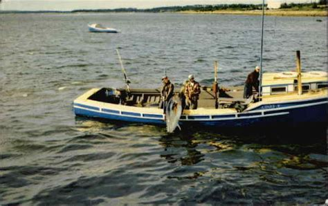 tuna fishing  nova scotia fishing