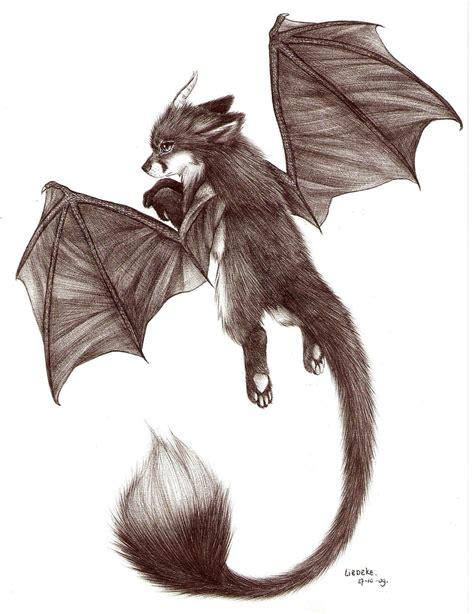 dragon fox  liedeke  deviantart